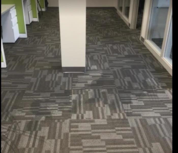 water damaged carpet in office