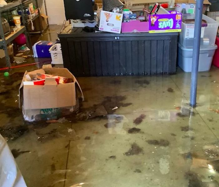 standing water in basement of home