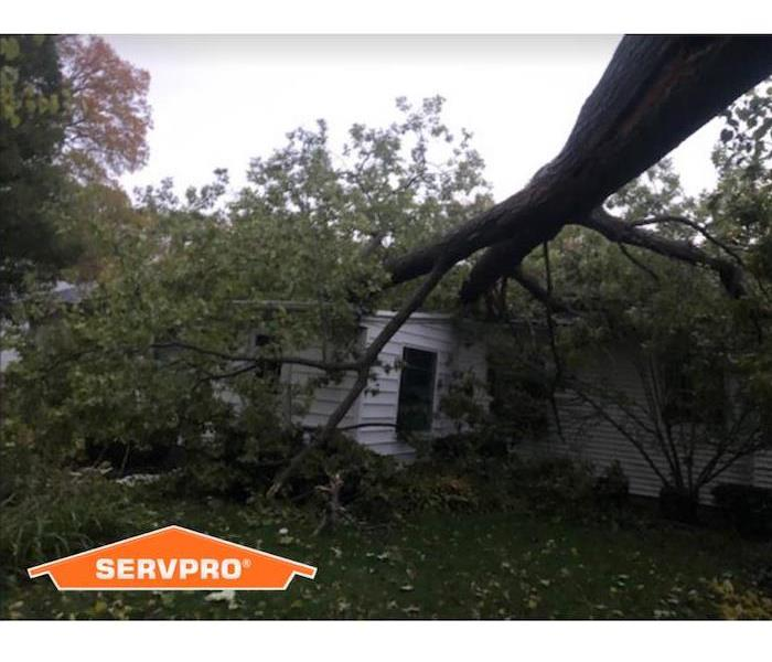 tree fallen on home with SERVPRO logo