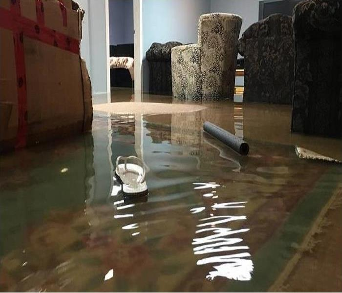 Water Damage Steps to take when your basement floods